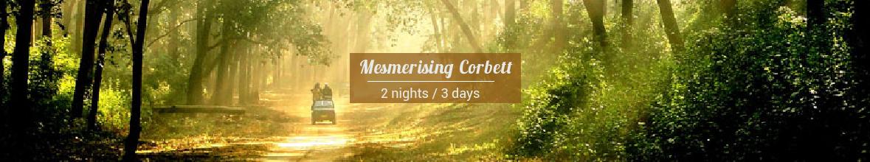 Mesmerising Corbett