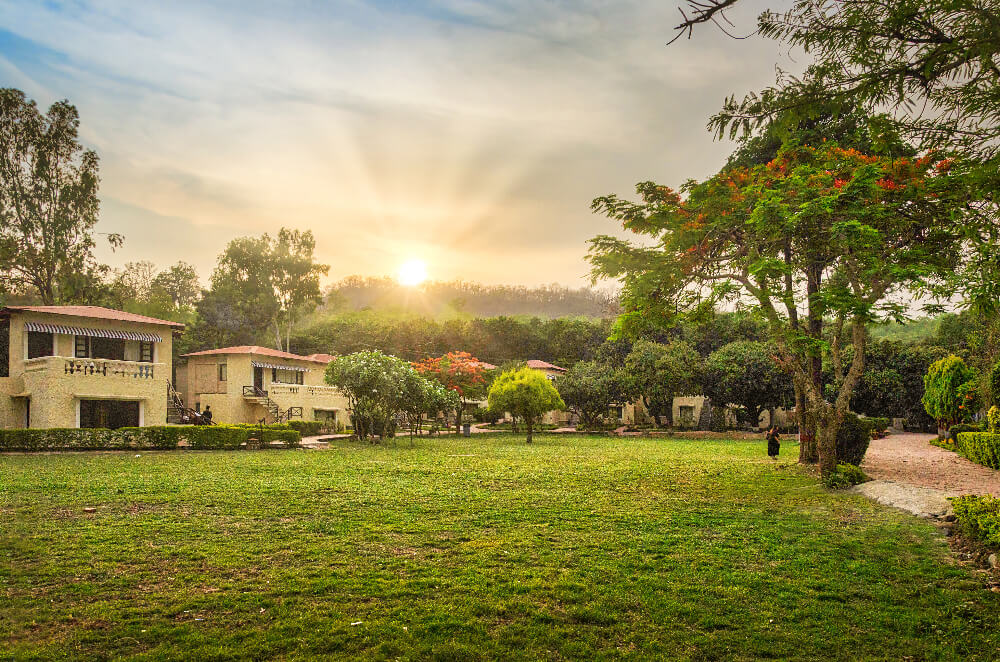 wildlife resort in corbett
