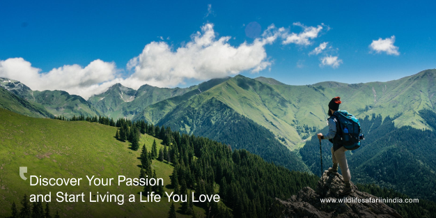 What's Life without Passion & Finding Your Passion