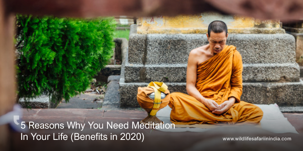 5 Reasons Why You Need Meditation In Your Life (Benefits in 2020)
