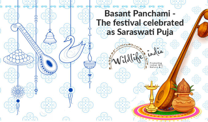 Basant Panchami - The festival celebrated as Saraswati Puja