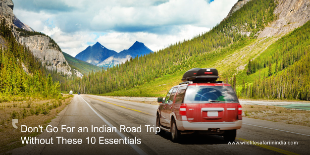 Don't Go For an Indian Road Trip Without These 10 Essentials