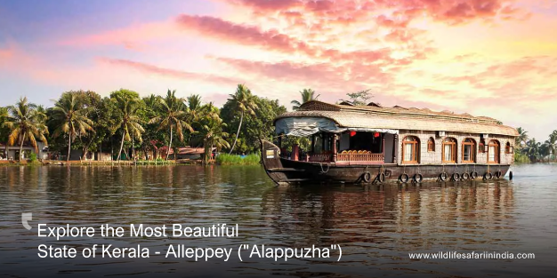 Explore the Most Beautiful State of Kerala - Alleppey