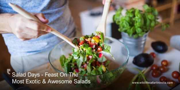 Salad Days - Feast On The Most Exotic And Awesome Salads
