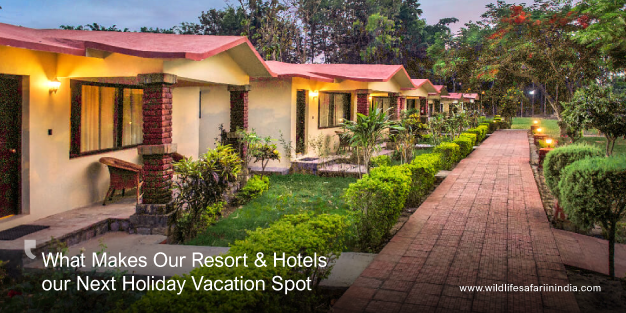 What Makes Our Resort & Hotels Your Next Holiday Vacation Spot